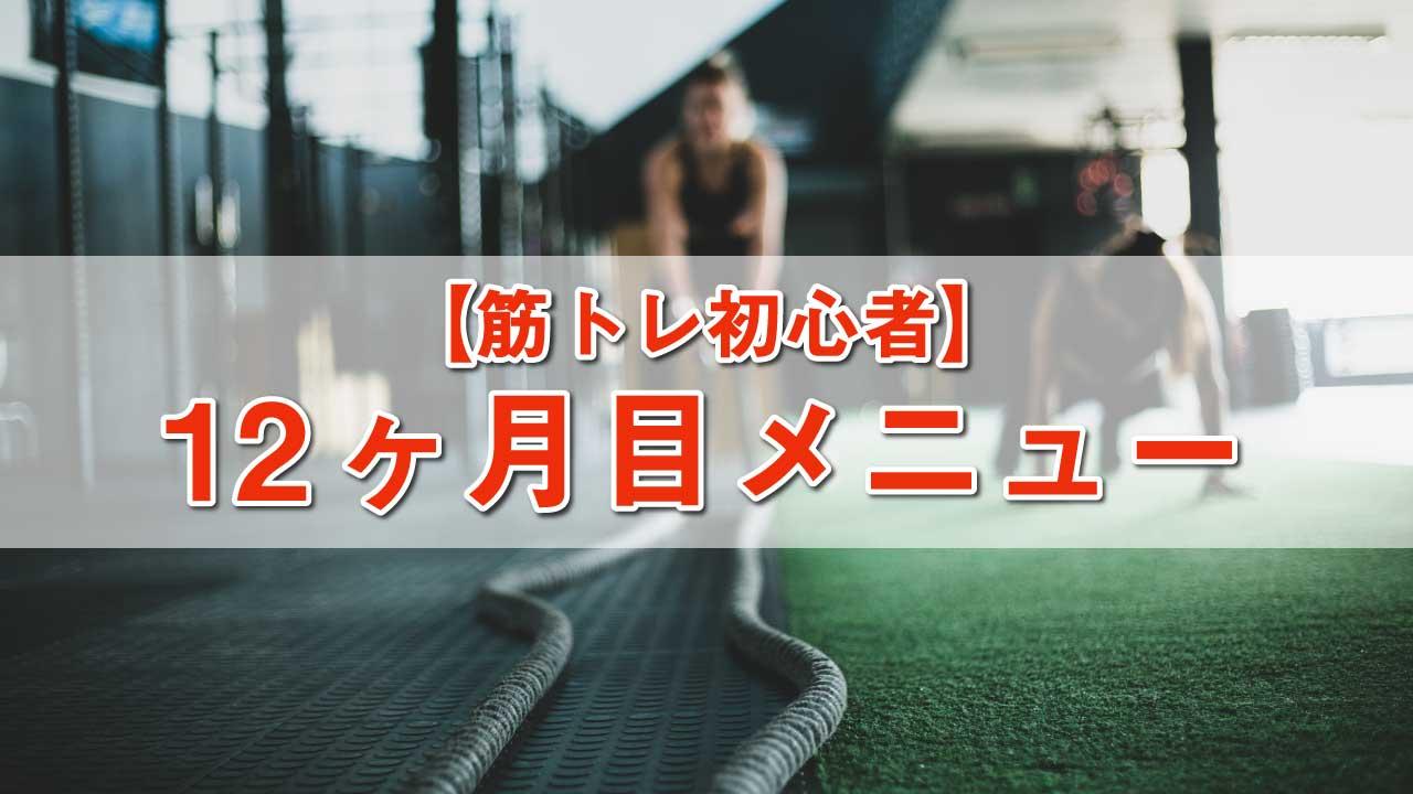 筋トレ初心者メニュー-12ヶ月目